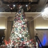 Drake Hotel in Chicago at Christmas
